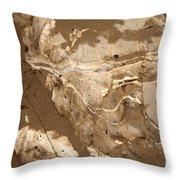 Facing The Past Throw Pillow