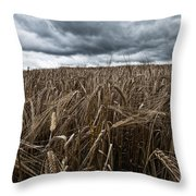 Facing The Storm Color Throw Pillow