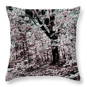 Facing The Unknown Throw Pillow