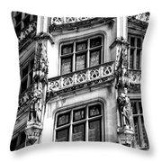 Facing Windows Biltmore Nc Throw Pillow