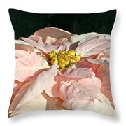 Faded Coral Throw Pillow