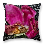 Faded Rose - Youth And Age Throw Pillow