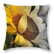 Faded Sunflower Throw Pillow