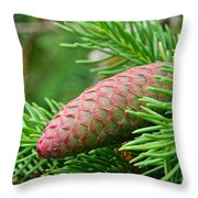 Fading Shades Throw Pillow