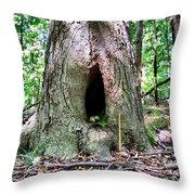 Fairy Blessings Throw Pillow
