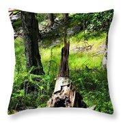 Fairy Dwelling Throw Pillow