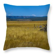 Fairy Falls Valley Throw Pillow