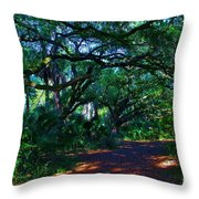 Fairy Path Throw Pillow