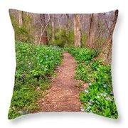 Fairy Paths Throw Pillow