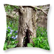 Fairy Place Throw Pillow