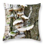 Fairy Staircase Throw Pillow
