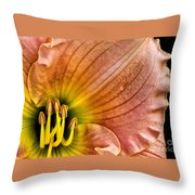 Fairy Tale Pink Daylily Closeup Throw Pillow