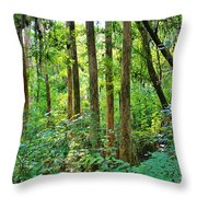 Fairy Trees Throw Pillow