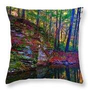 Fairyland Forest Throw Pillow