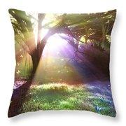 Fairyland Sunset Throw Pillow