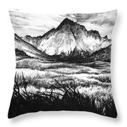 Faith As A Mustard Seed Throw Pillow