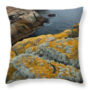 Falkland Islands Throw Pillow