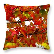 Fall 08-005 Throw Pillow