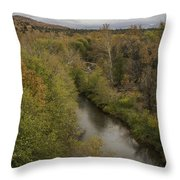Fall Along The Creek Throw Pillow