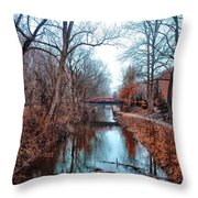 Fall Along The Delaware Canal Throw Pillow