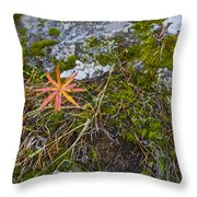 Fall And Moss Throw Pillow