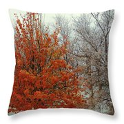 Fall And Winter 2 Throw Pillow