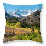 Fall Aspen Below The Sierra Crest Throw Pillow