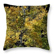 Fall Aspen Throw Pillow