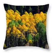 Fall Aspens Throw Pillow
