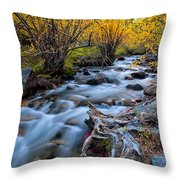 Fall At Big Pine Creek Throw Pillow