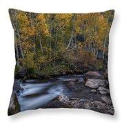 Fall At Bishop Creek Throw Pillow