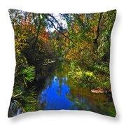 Fall At Kelly Park Throw Pillow