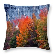 Fall At Steele Creek Throw Pillow