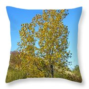 Fall At The Dunes Throw Pillow