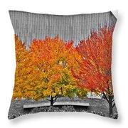Fall At The Mann Throw Pillow