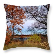 Fall At West Park Pond Throw Pillow