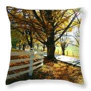Fall Back Roads Throw Pillow