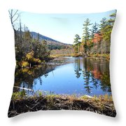 Fall Beaver Dam Throw Pillow