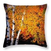 Dazzling Birch Throw Pillow