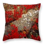 Fall Blueberries And Moss-h Throw Pillow