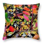Fall Blueberry Bush Throw Pillow