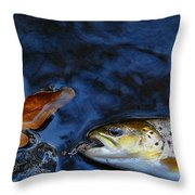 Fall Brown Trout Throw Pillow