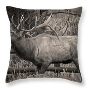 Fall Bugling Throw Pillow