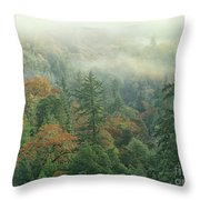 Fall Color And Fog Near Garberville California Throw Pillow