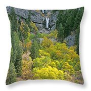 Fall Color And Waterfalls In Provo Canyon Utah Throw Pillow