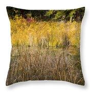 Fall Color At Banff Spring Basin Throw Pillow