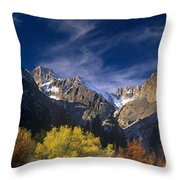 Fall Color Below Middle Palisades Glacier Eastern Sierras California Throw Pillow