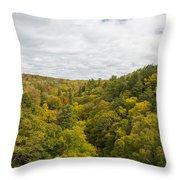 Fall Color Hills Mi 1 Throw Pillow