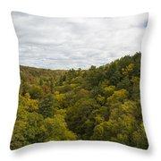 Fall Color Hills Mi 2 Throw Pillow