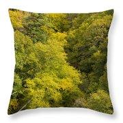 Fall Color Hills Mi 3 Throw Pillow